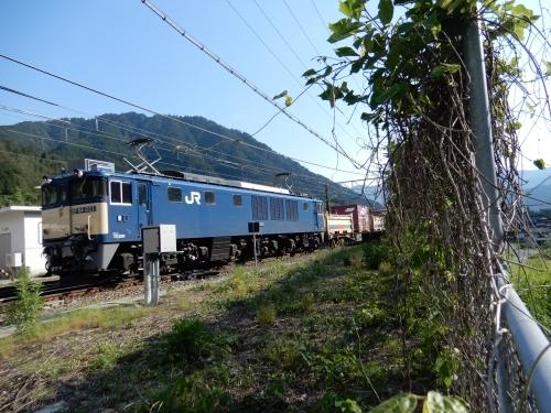 DSCN7863.JPG