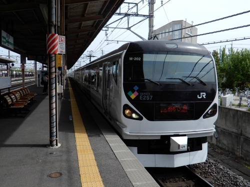 DSCN7905.JPG